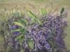 2nd Prize - John Adeney Section - Early Spring - Eunice Stewart - Acrylic