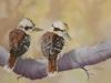 Mum and Bub Kookaburras - Denise Smith - Pastel